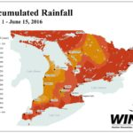 Eastern Ontario, parts of the Near North and a region bounded by Essex to Niagara are the worst hit by excessive dryness. (Map courtesy Weather INnovations)