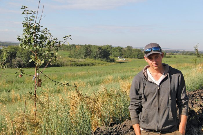 Takota Coen has planted fruit and nut trees between his pasture land and a 1.5-kilometre swale that collects run-off from his annual crop field and feeds his farm's drip irrigation system — creating a sustainable system that balances water management, perennial crops, and annual crops.