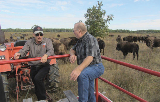 Bison producer Ken Overby (l) and Ralph Eichler, provincial agriculture minister, talk a bit about bison production Sept. 18 as part of Open Farm Day.