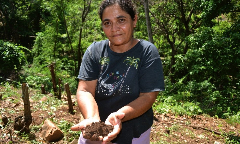 As the soil gets drier, Guillarmina Castro looks to import agronomic strategies like no till.