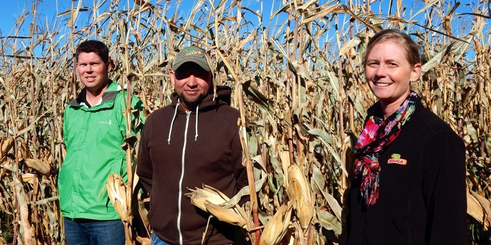 For Allan Froese, Rafael Mateo and Sarah Gehlar, the 110 bushel-per-acre goal is just a start.