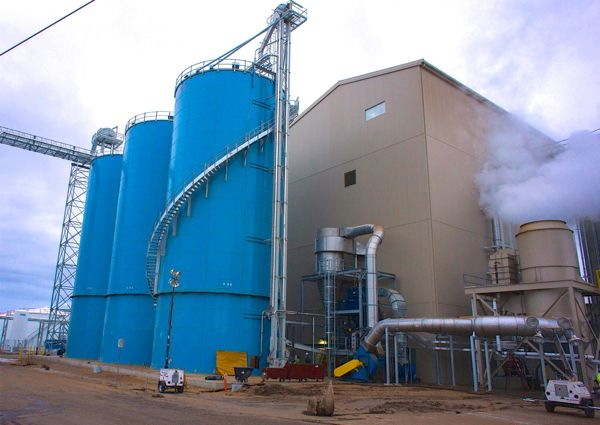 Legumex to sell processing plants, wind down company | Grainews