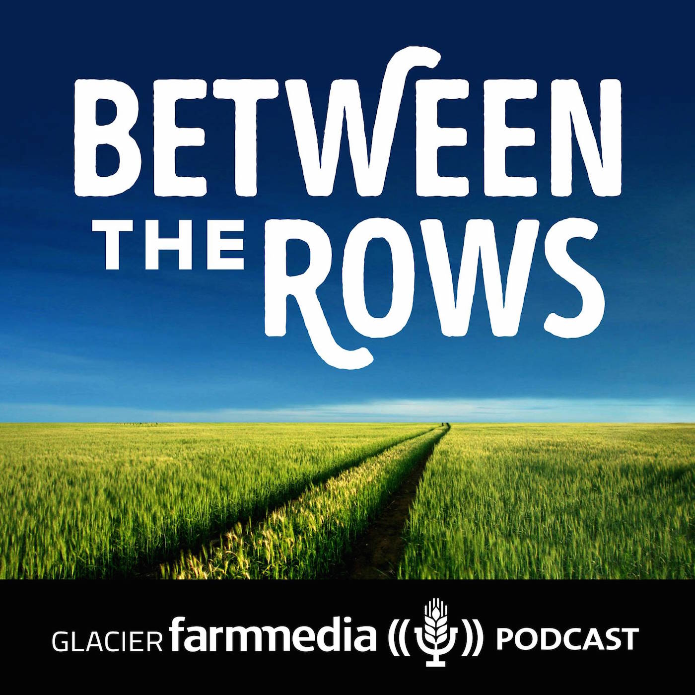 between-the-rows