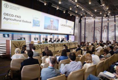 FAO OECD event
