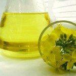 canola oil in a laboratory flask