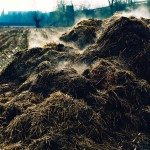 Government grants available for manure handling
