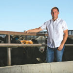 Long-running cattle checkoff battle may be coming to an end