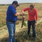Mentorship program links the lab to the ranch