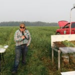 Specialist offers tips for grazing cover crops