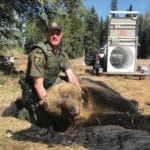 Too close for comfort: Farmers recount grizzly bear encounter
