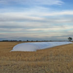 Get the most from your grain bags