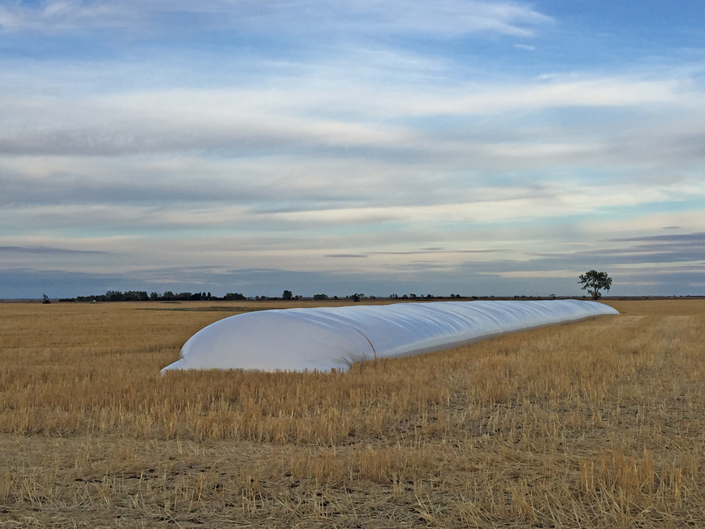 Try These Three Tips To Get The Most From Your Grain Bag Storage This Harvest Season