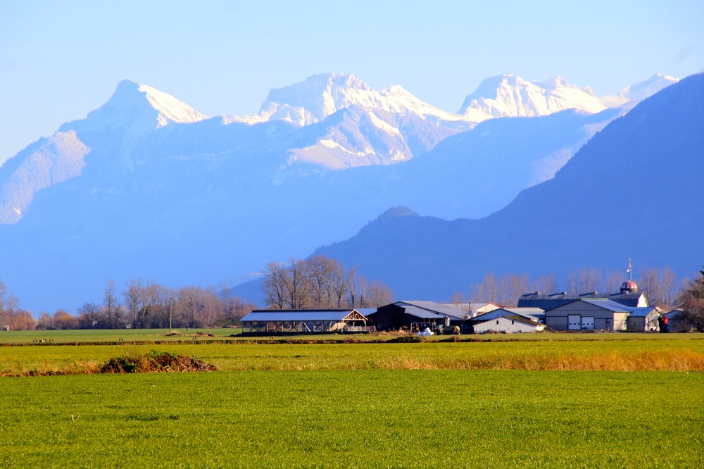 Rural Landscape in south western Canada and snow capped mountains