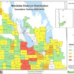 Eight new clubroot cases found in Manitoba canola this year