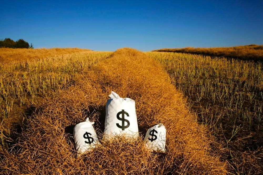 Bags Of Money On A Farm Field