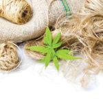 Untangling the future of hemp fibre