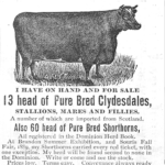 J. E. Smith purebred Clydesdales and Shorthorns