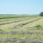 Fields wanted for MFGA Green Gold Program