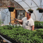 Dream of a greenhouse business takes off