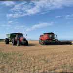 Dry conditions impacting crop yields for some Manitoba farmers