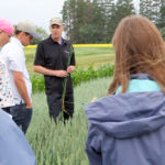 Timing fungicide decisions in canola and cereal crops