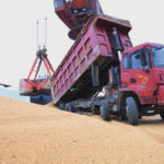 Chinese importers scoop up Brazilian soybeans