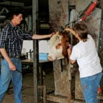 Avoid lapses in your vaccination program