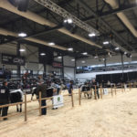 Agribition unveils new trade centre