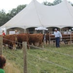 Ag in Motion livestock programming draws impressive crowds